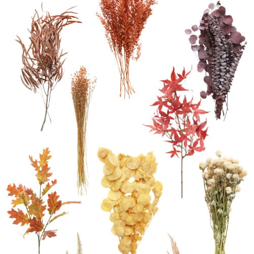 The Best Fall Floral Stems